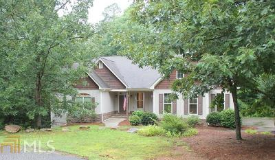 Lumpkin County Single Family Home For Sale: 538 Fern Park Dr