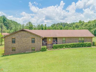 McDonough Single Family Home For Sale: 358 Coan