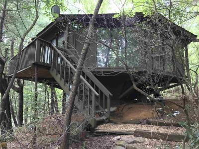 Pickens County Single Family Home For Sale: 29 Treetopper Ln