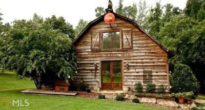 Lagrange Single Family Home For Sale: 391 Hammett Rd
