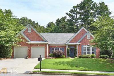 Suwanee Single Family Home For Sale: 565 Birnamwood Dr