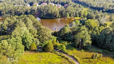 Stockbridge Single Family Home New: 4234 E Fairview Rd