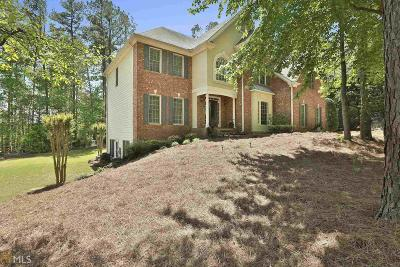 Peachtree City Single Family Home For Sale: 570 Crabapple Ln