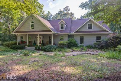 Dahlonega Single Family Home For Sale: 14 Lake Point