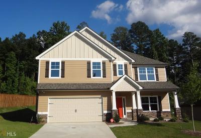 Newnan Single Family Home New: 20 Delaware Way #14