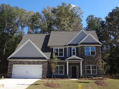 Newnan Single Family Home New: 8 Delaware Way
