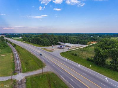 Franklin County Commercial For Sale: Hwy 17