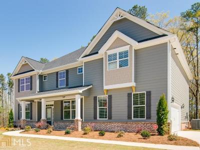 McDonough Single Family Home New: 177 Ruby Ln #120