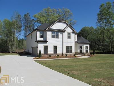 McDonough Single Family Home New: 141 Ruby Ln #113