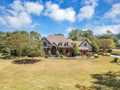 Loganville Single Family Home For Sale: 3310 Garmon Dr