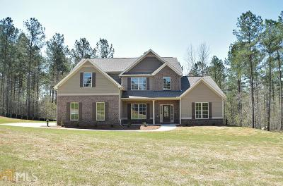 Henry County Single Family Home New: 301 Vantage Pt #73
