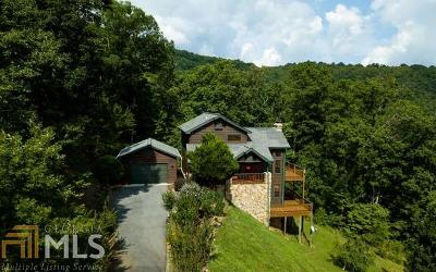 Blairsville Single Family Home Under Contract: 126 Kellie Dr Ii