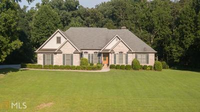 Dawsonville Single Family Home New: 46 Riverview Dr