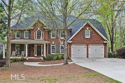 Cobb County Single Family Home New: 455 Pegamore Creek Drive