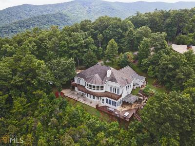 Hiawassee Single Family Home For Sale: 2602 The Ridges