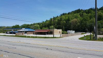 Rabun County Commercial For Sale: 4160 Highway 411 N