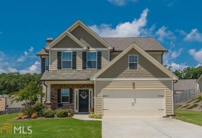 Single Family Home New: 325 Red Hawk Drive