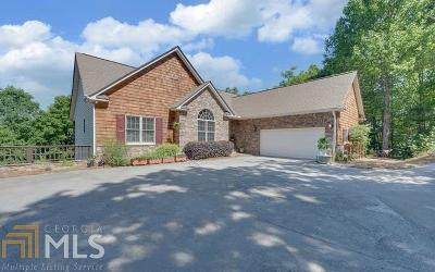 Hiawassee Single Family Home For Sale: 883 Ramey Mountain Rd