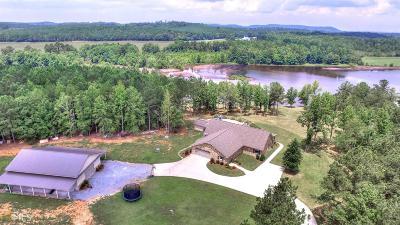 Floyd County, Polk County Single Family Home For Sale: 1191 Buchanan Hwy