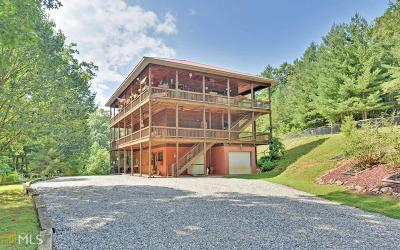 Blairsville Single Family Home For Sale: 42 Otters Cv