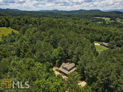Blairsville Single Family Home New: 73 Seth Dr