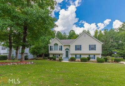 Douglasville Single Family Home New: 7287 Essex Dr