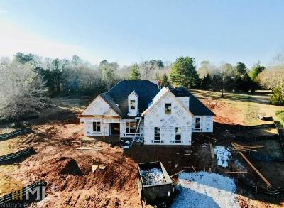 Hoschton Single Family Home For Sale: 197 River Bend Dr
