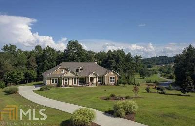 Blairsville Single Family Home New: 20 Bell Boy Run