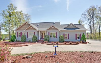 Blairsville Single Family Home New: 507 Copperhead #1