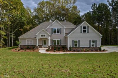 Coweta County Single Family Home New: Turnberry Trce #10