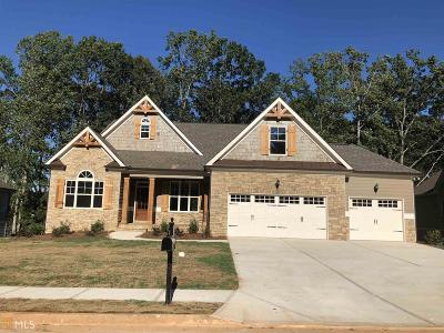Villa Rica Single Family Home For Sale: 295 Hanover Dr