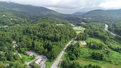 Rabun County Commercial For Sale: North Main St