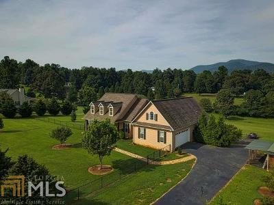 Towns County Single Family Home For Sale: 1425 Garland Ln