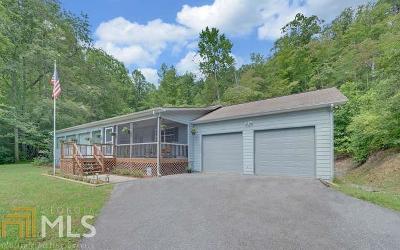 Hiawassee Single Family Home For Sale: 2295 Lovingood Rd