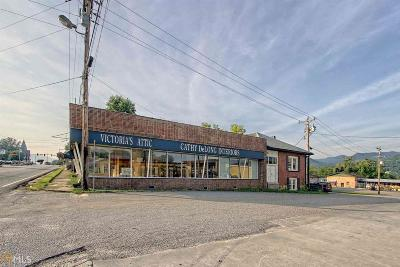 Hiawassee Commercial For Sale: 59 N Main St