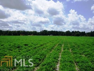 Brooklet Residential Lots & Land For Sale: Rad Denmark Rd