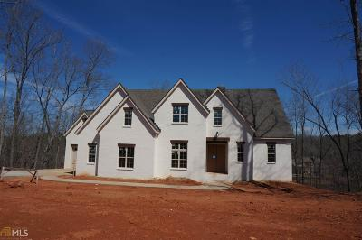 Newnan Single Family Home For Sale: South Arbor Shores #31 G2