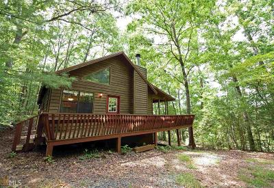Blairsville Single Family Home For Sale: 158 Back Log #19