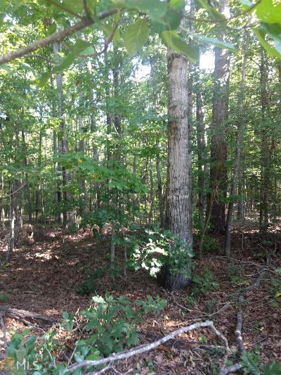 Lagrange Residential Lots & Land For Sale: Holiday Rd