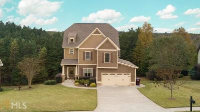 Dawsonville Single Family Home For Sale: 455 Morgan Ln