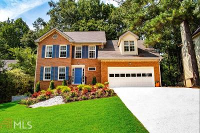 Snellville Single Family Home For Sale: 3575 Baywater Ct