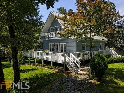 Blairsville Single Family Home For Sale: 158 Lake View Cir
