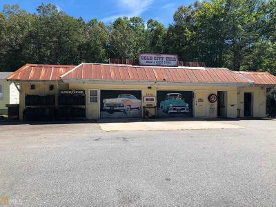 Lumpkin County Commercial For Sale: 2224 Us Hwy 19