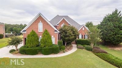 Dawsonville Single Family Home For Sale: 742 Gold Creek