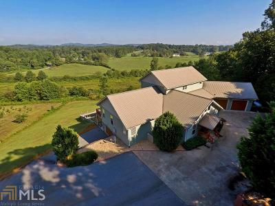 Blairsville Single Family Home For Sale: 99 Skyline Dr