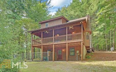 Blairsville Single Family Home For Sale: 175 Anna Belle Ln