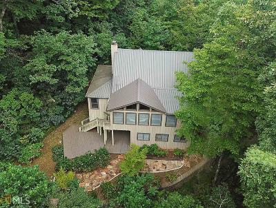Rabun County Single Family Home For Sale: 230 Blowing Wind Ln