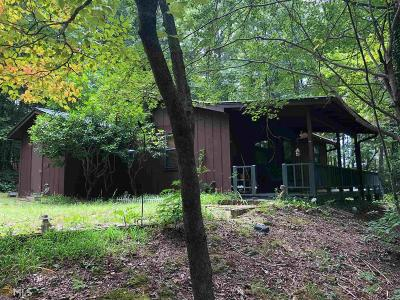 Blairsville Single Family Home New: 106 Silver Fox Trl