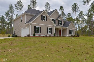 Newnan Single Family Home For Sale: Smokey Rd #6