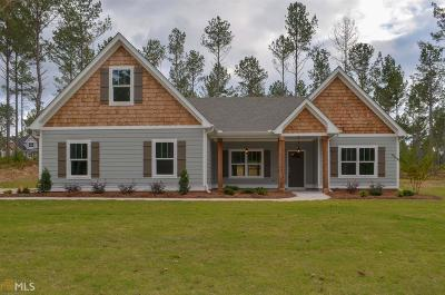 Newnan Single Family Home For Sale: Smokey Rd #5